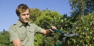 Landscaper Jobs