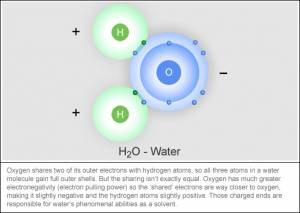 Why Isn't Water on the Periodic Table?