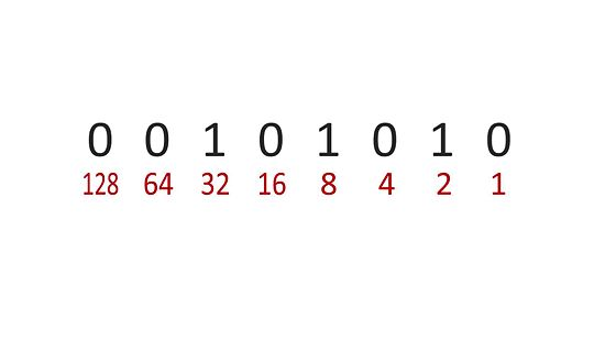 How to Read Binary Codes—Introducing the Slot Method - All ...