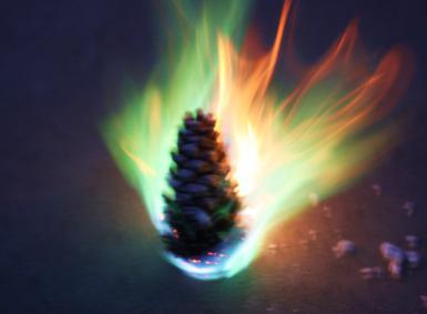 Burning Pinecones