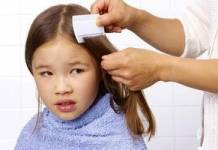 Easy Tips to Avoid and Prevent Head Lice in Children
