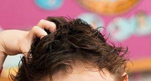 Five Main Reasons Why Your Children Have Head Lice